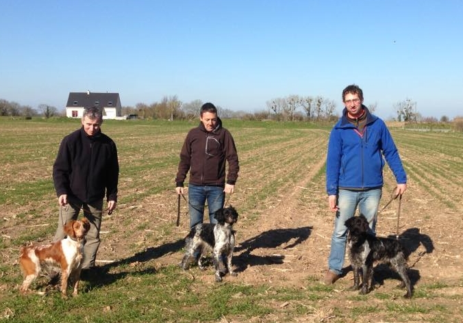 centrale canine le havre